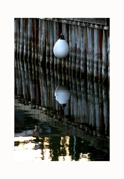 Photo Art Print Poster - Reflection
