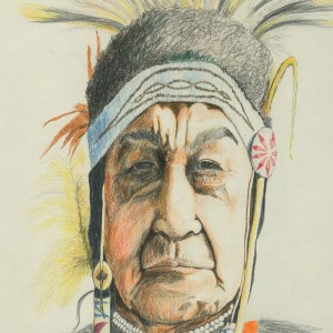 Warrior Chief by James T. Giles