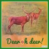 Dear oh Deer Xmas cards designed by Jacqueline Hammond for SmartDeco https://www.smartdecostyle.com/ Shareable Content Copyright©2014 Jacqueline Hammond