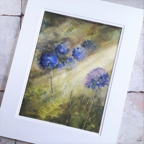 A watercolour painting of agapanthus. Deep blues and gorgeous sage greens, picked out in a shaft of lemony sunlight.