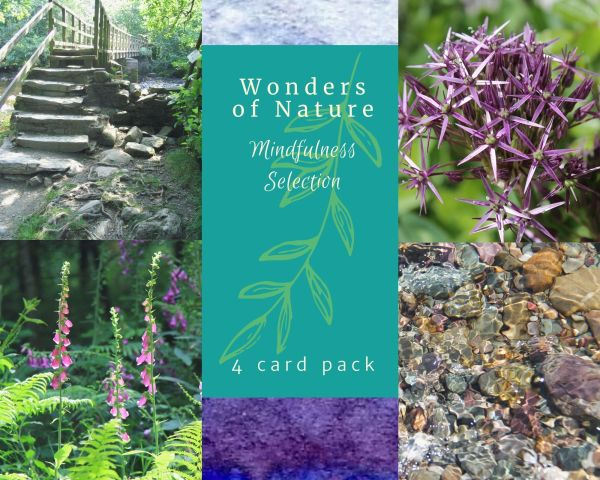 4 card pack of stunning photographic greetings cards.