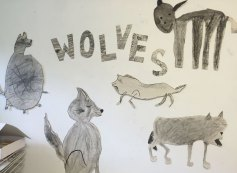 Wolves in the Wall illustration project
