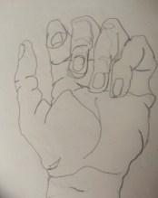 Wilson IMAGE Beginning Drawing