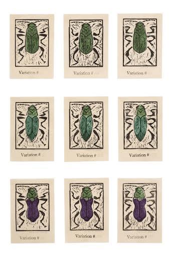 Helen K Davie 1 An Inordinate Fondness for Beetles