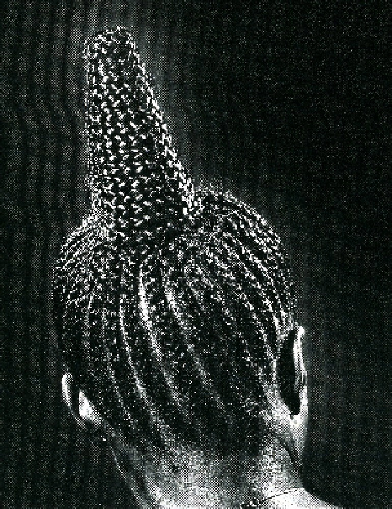 Image: Modern Suku, 1979, captures a beautiful hairstyle of Nigerian women. The Gelatin silver print is by J.D. 'Okhai Ojeikere
