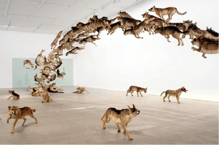 Image: Cai Guo-Qiang wolves installation  titled  Head On was commissioned in 2006 by  The Deutsche Bank Collection-Art