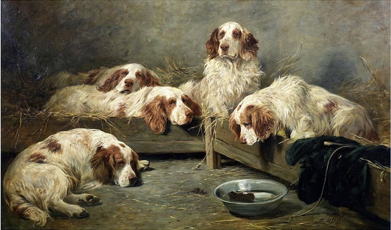 Image: John Emms's painting, An unexpected Visitor - Clumber Spaniels in a kennel is one of the painting of dogs expected to make record price at auction