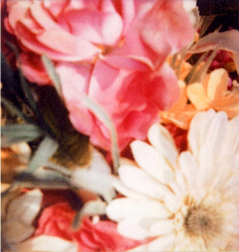 Image: Photograph of Flowers at St Barth by Cy Twombly
