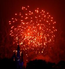 Fireworks f 080112 MK P1080161 221px