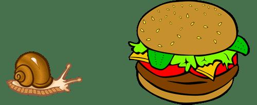 heathy food - slow food