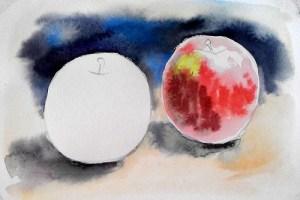 акварельный ютюд с яблоками прорисовываем правое яблоко
