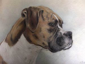 learn to draw and paint, merseyside, commissioned pet portraits, merseyside
