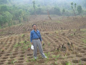 Tree-Holes-Myanmar-Tom-Post