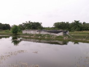 Alfonso's Brother: Working on Tilapia Fish Farming
