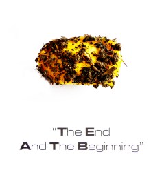 """The End And The Beginning"""