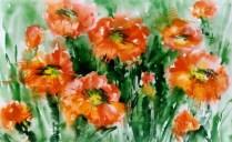 Zbúra, 50x70 cm, akvarel