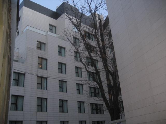 hotel-arbol2