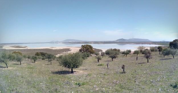 Laguna Fuente de Piedra