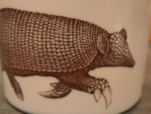 yes, you see correctly - it IS AN ARMADILLO!  on lavender!  these are so neat!