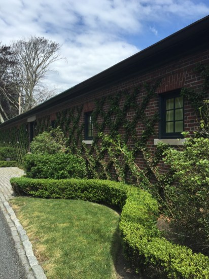 ww-green-x's-and-curves-newport-artefacthome