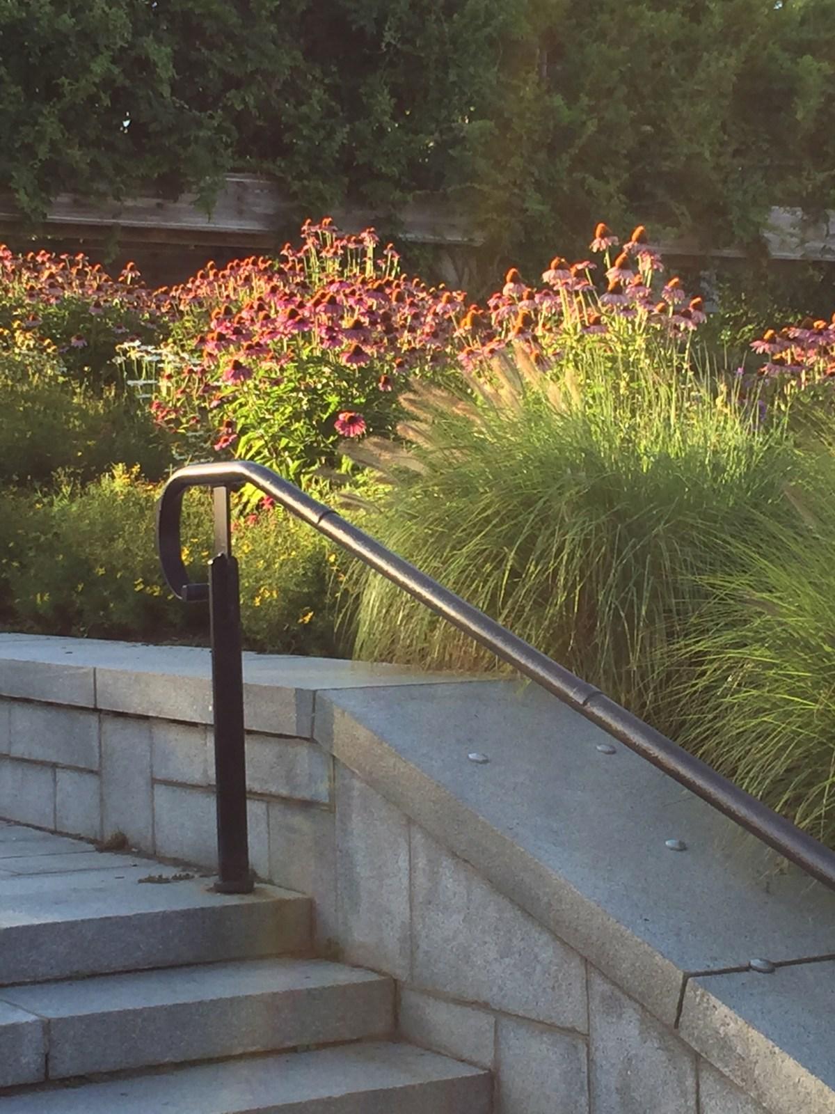 'christopher columbus park' planting boston.jpg
