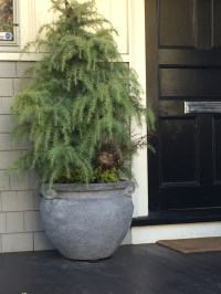 pine-woven nest-golden egg-olive jar-pennoyer newman@artefacthome