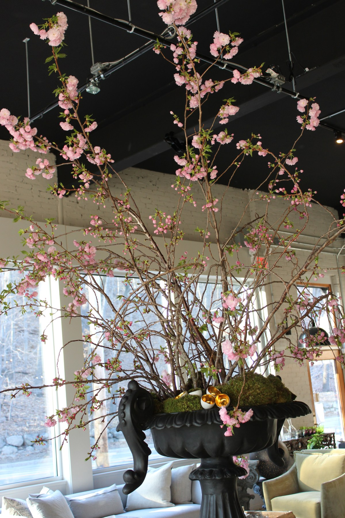pink cherry blossoms-chelsea urn-pennoyer newman@artefacthome