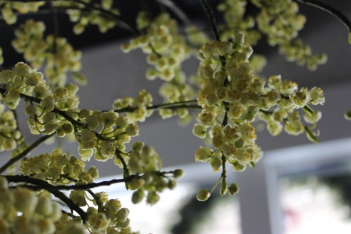 spring twigs-japanese@artefacthome