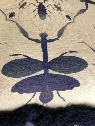 textile-pillow-mantis in indigo with fringe-artefacthome