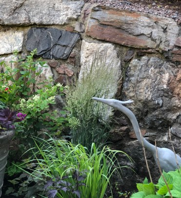 jl-tall heron-stone wall-grasses-062118