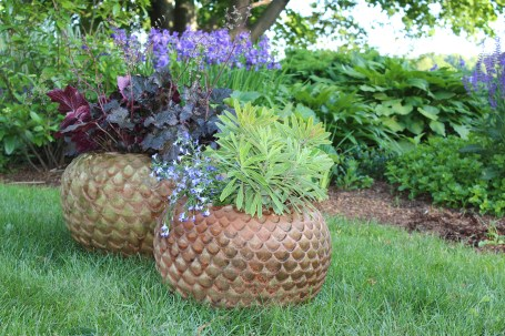 echeveria planters - round + fun, planted or unplanted