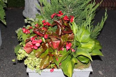 Elmbank Small Florentine planting Sept 2013-09-14 19.07.26