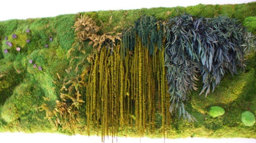 Vegetación mural