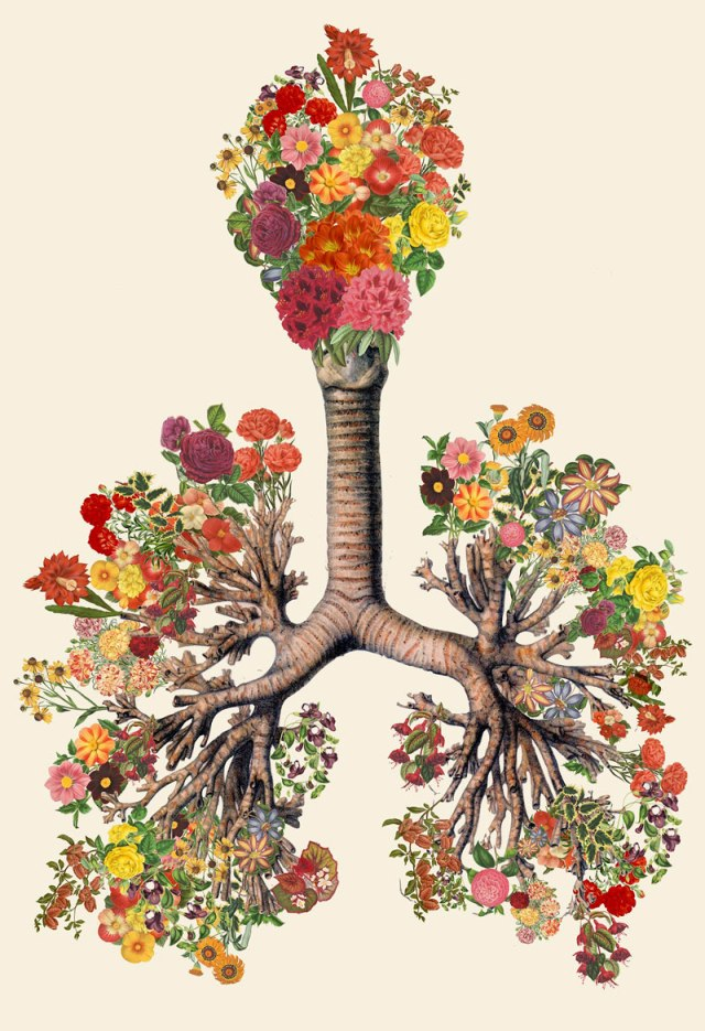 surreal-anatomical-collages-by-travis-bedel-aka-bedelgeuse-4