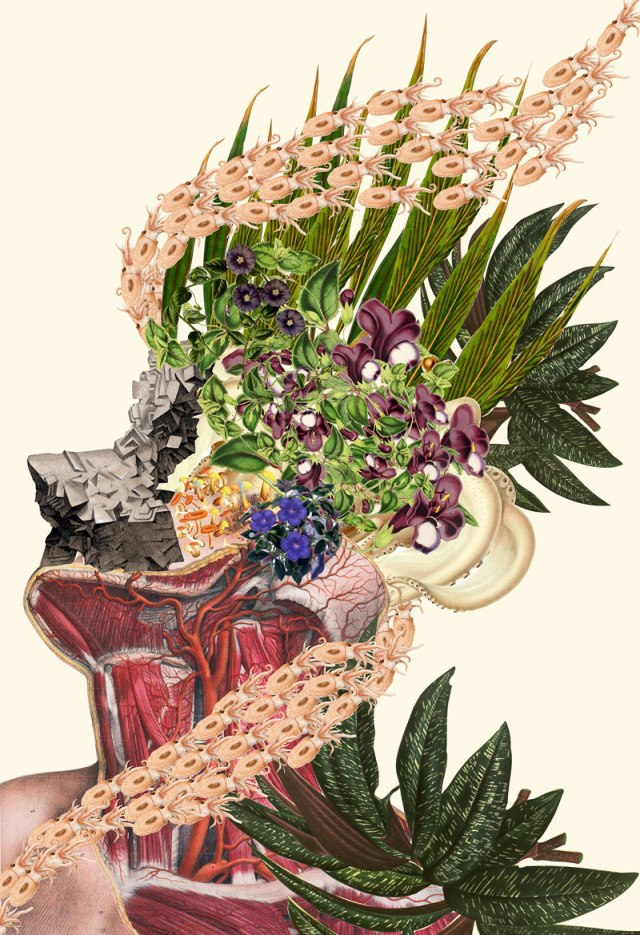 surreal-anatomical-collages-by-travis-bedel-aka-bedelgeuse-6