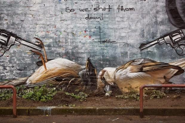 lonac-birds-620x413