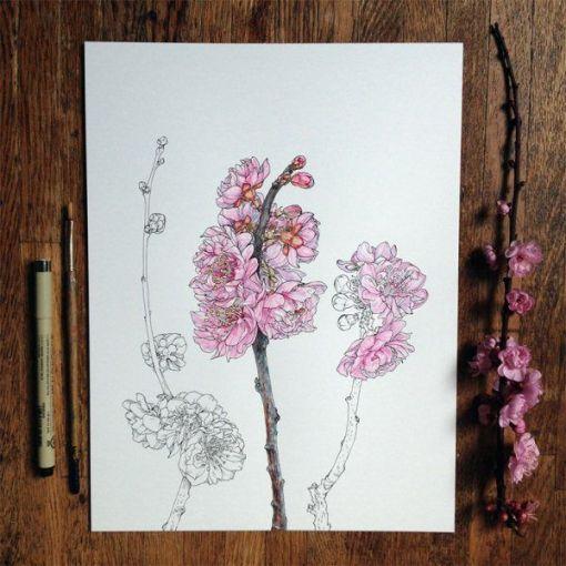 dibujos de flores 1