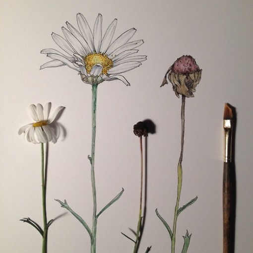 dibujos de flores  10