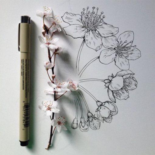 dibujos de flores 3