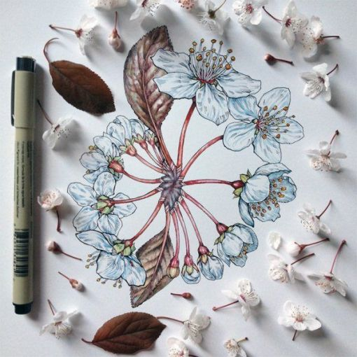 dibujos de flores 7