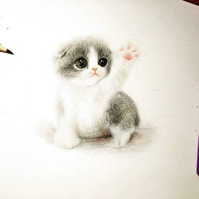 dibujos de animales tiernos gato