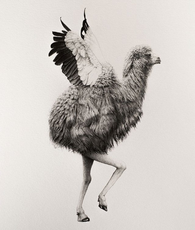 bestiario-animal-5