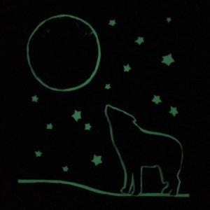 Quadretto magico Il lupo