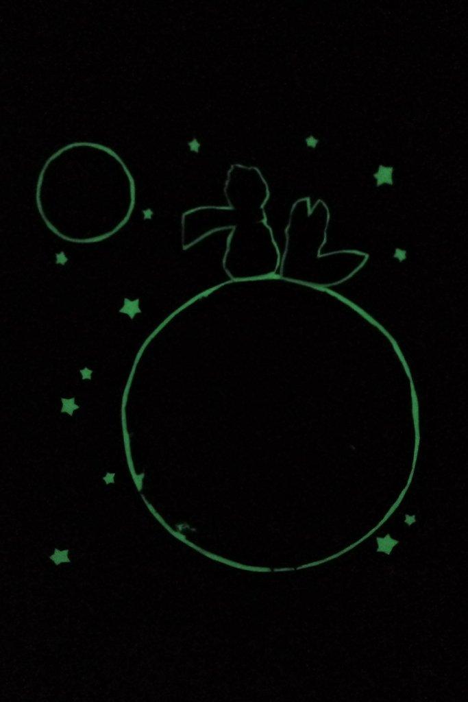 serie-favole-piccolo-principe-006