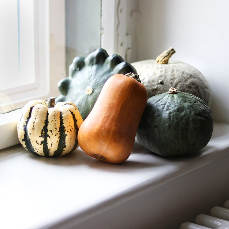 puumpkins