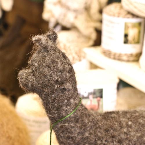 felty alpaca