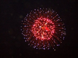 Fireworks in the meadow