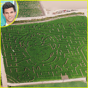 taylor-lautner-corn-field
