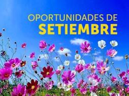 oportunidades_setiembre_