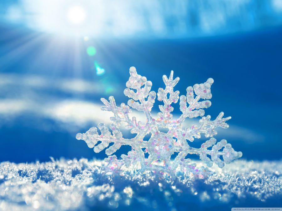 5 Filmes congelantes para quem adora sentir frio.